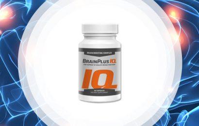 New on-line discounts for BrainPlus IQ