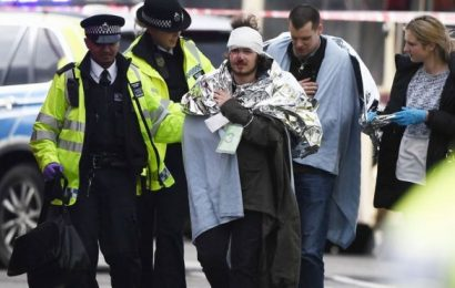 London under terror: attack at the Palace of Westminster and Westminster Bridge