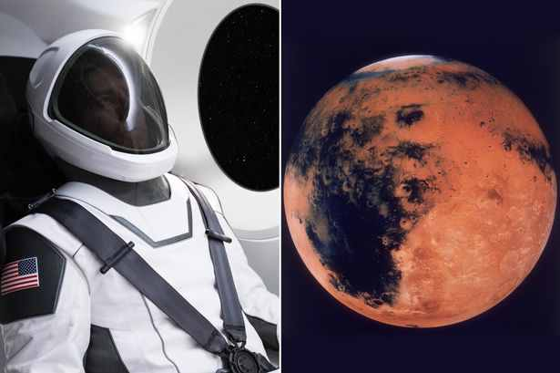 SpaceX Shares First Image of the Future Elon Musk Spacewear