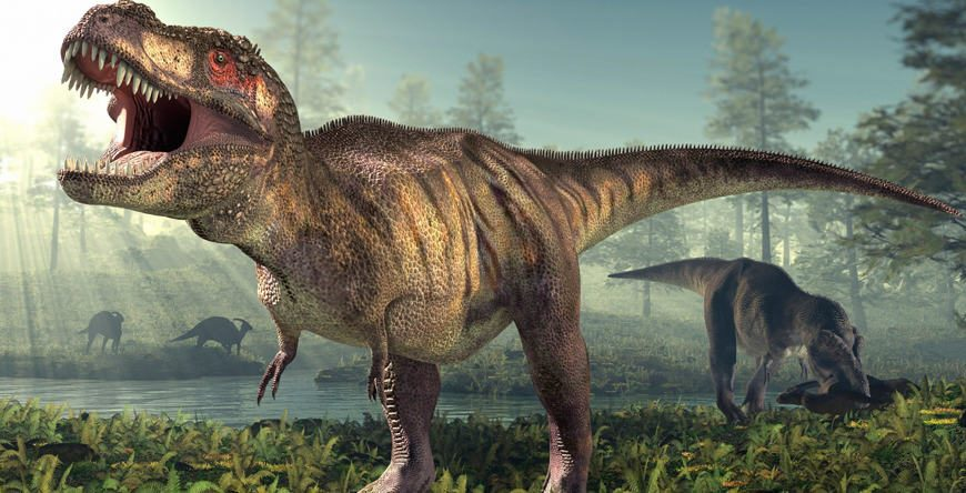 Possible Baby Tyrannosaurus Rex Fossil Discovered in Montana's Hell Creek