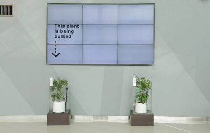 The results of Ikea's 'bullied' plant experiment – what scientists say
