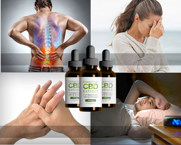 Essential CBD Extract South Africa: special offers available