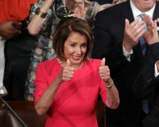 Nancy Pelosi is Voted House Speaker and Passes Bills to End Shutdown
